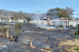 Read more about the article Corpo de Bombeiros combatem três incêndios na área urbana de Corumbá