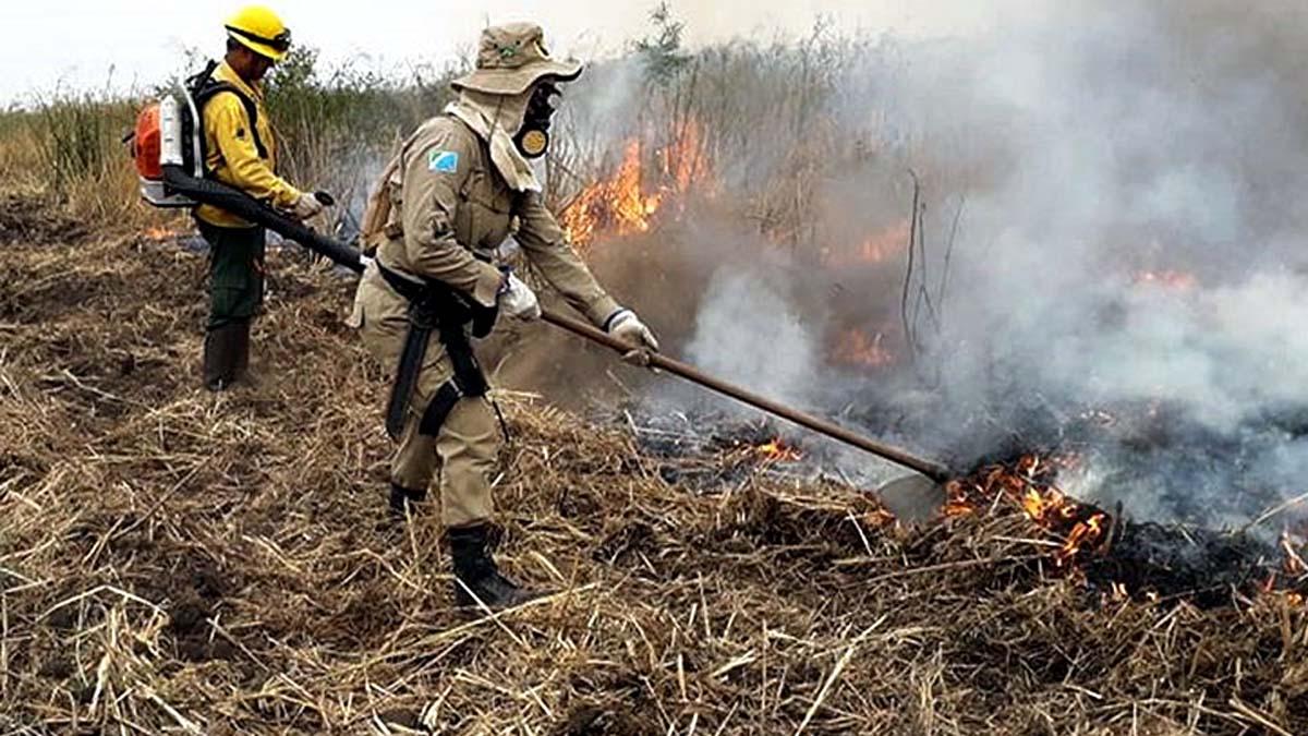 You are currently viewing Corpo de Bombeiros alerta para prevenção de queimadas durante período de estiagem