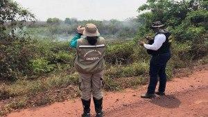 Read more about the article PMA aguarda conclusão de laudos para autuar fazendas por crime ambiental no Pantanal