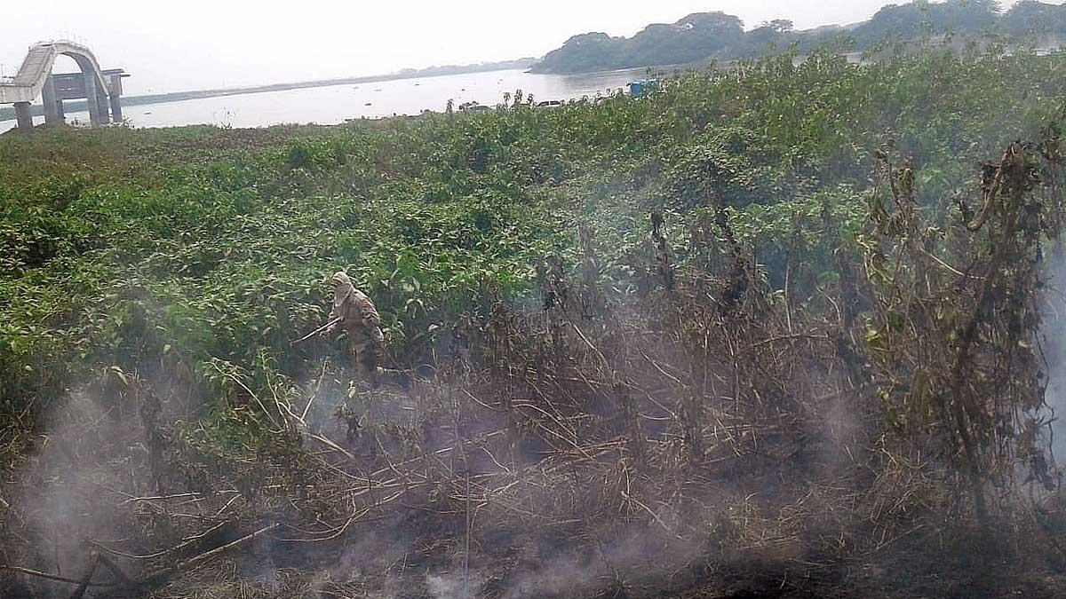 Read more about the article Seis incêndios em vegetação são controlados pelos Bombeiros em Corumbá