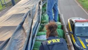 Read more about the article PRF apreende 50 mil peças de vestuário em meio a carga de adubo na BR-163
