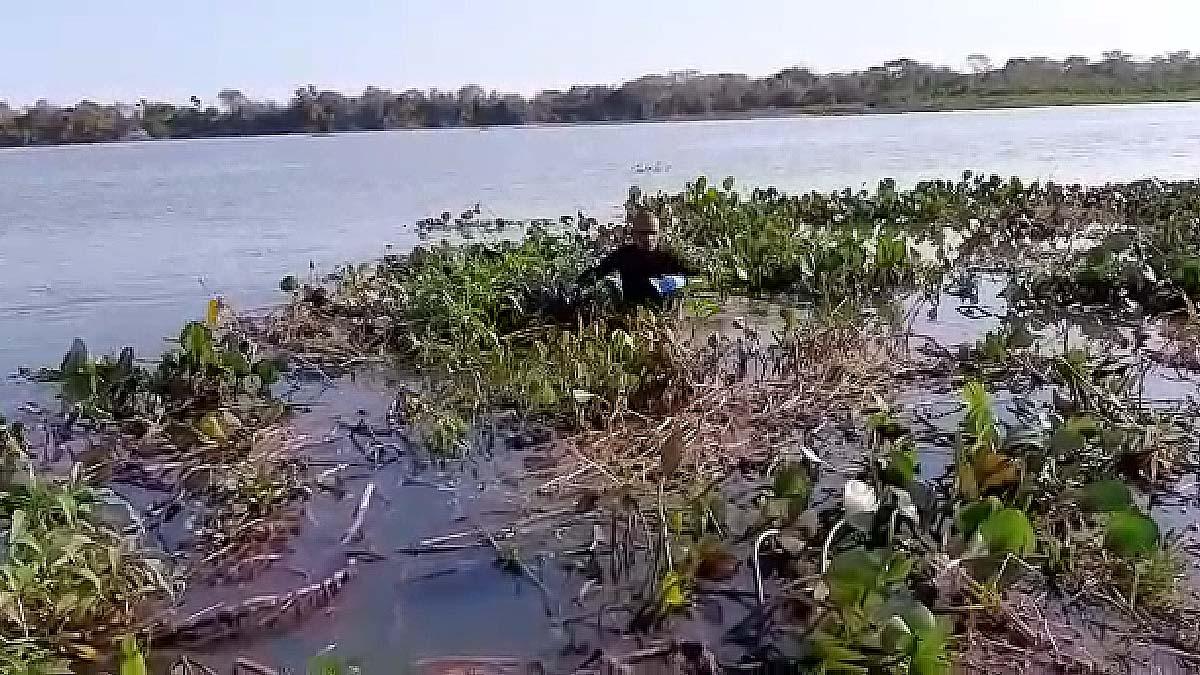 You are currently viewing Buscas por criança que desapareceu no rio Paraguai entram no 7º dia   Vídeo