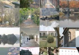 Dharma em Portugal