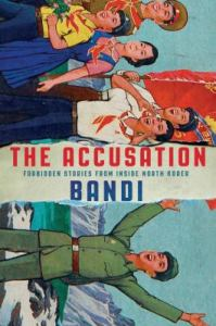 The Accusation book cover