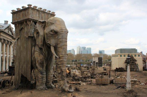 Elephant Of Bastille Folkestonejack' Tracks