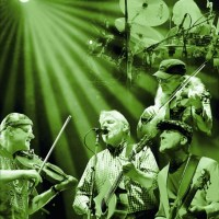 Fairport Convention celebrate their golden jubilee