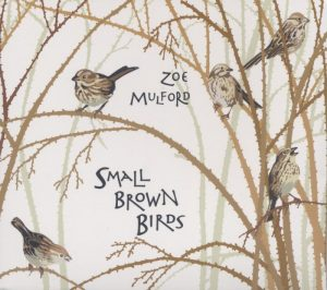 Small Brown Birds