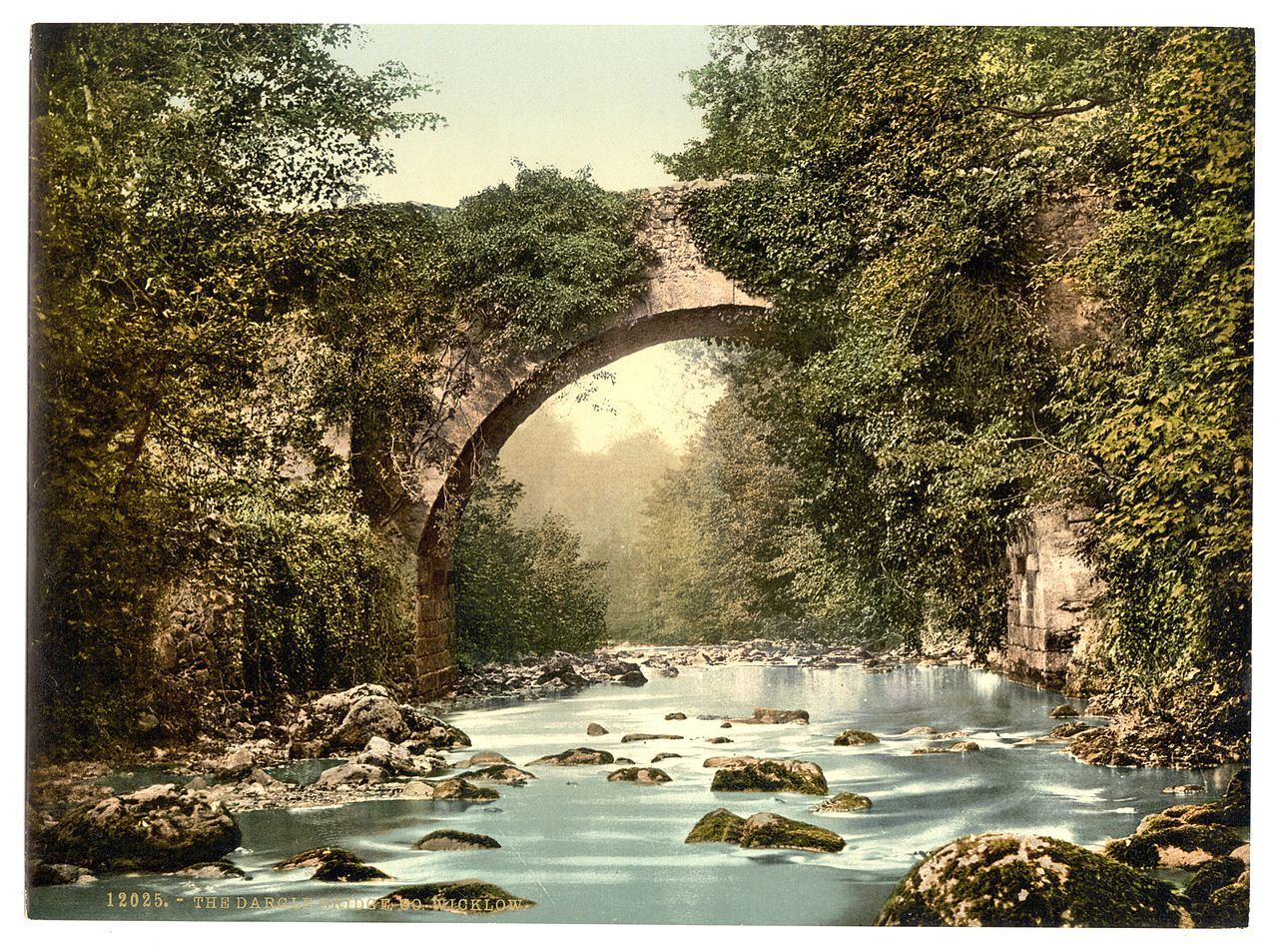 The Dargle Bridge. County Wicklow, Ireland
