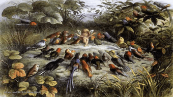 In Fairy Land (1870) by Richard Doyle