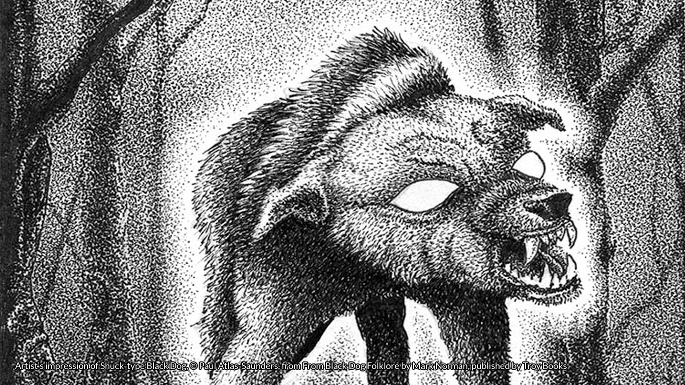 Artist's impression of Shuck-type Black Dog, © Paul Atlas-Saunders, from From Black Dog Folklore by Mark Norman, published by Troy Books