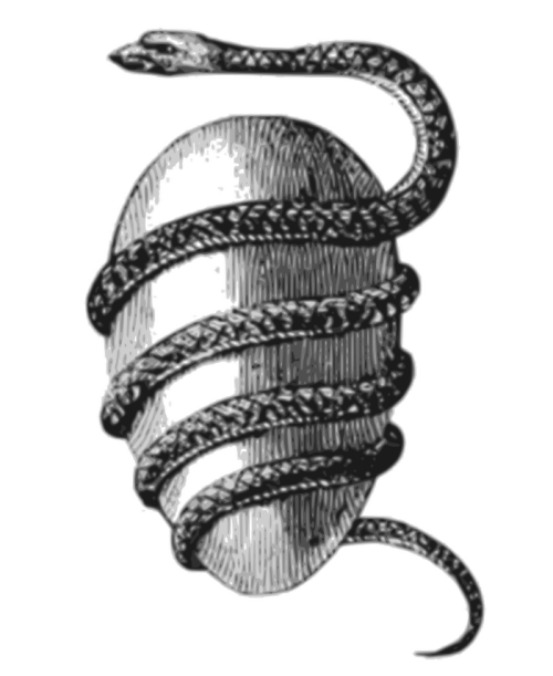 Jacob Bryant's Orphic Egg (1774). The Orphic Egg in a depiction by 18th-century mythographer Jacob Bryant. In the beliefs of the Ancient Greeks, this was the cosmic egg from which Phanes the god of procreation emerged.