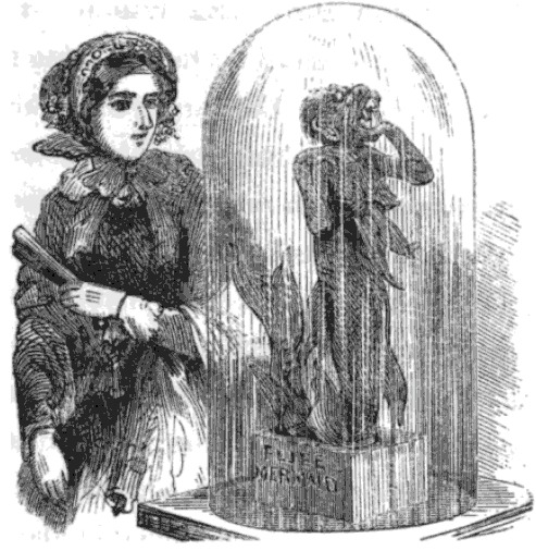 A Victorian lady examines P. T. Barnum's Feejee Mermaid at the Boston Museum in 1857. https://commons.wikimedia.org/wiki/File:FeejeeMermaid_BostonMuseum_Midgley_SightsInBoston.png