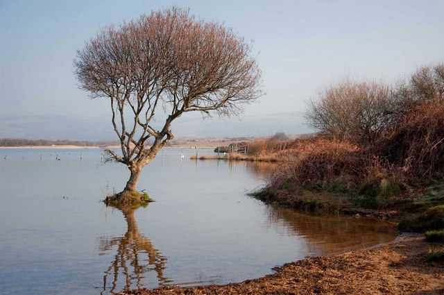 Kenfig Pool by Mick Lobb https://commons.wikimedia.org/w/index.php?curid=33023458