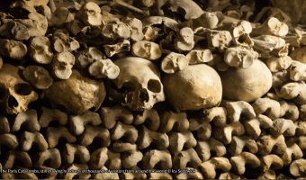 Skulls and long bones piled up against the walls of the Paris catacombs