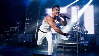 Photo of 311, Dirty Heads, The Interrupters, Dreamers, Bikini Trill,