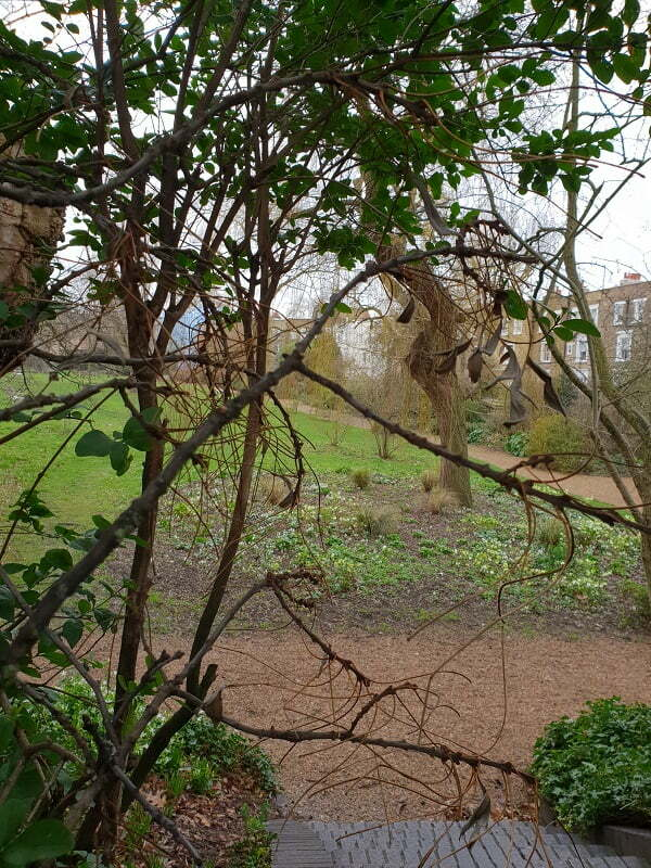 notting-garden