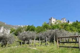 castello-di-avio