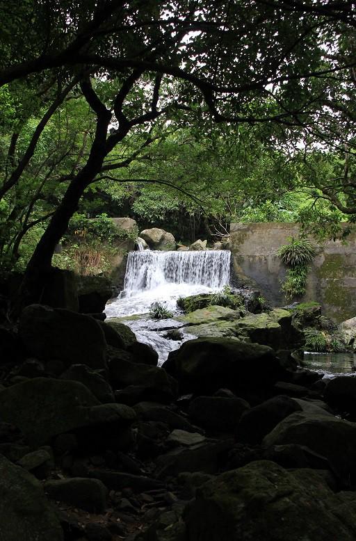 遠處的水壩遺址