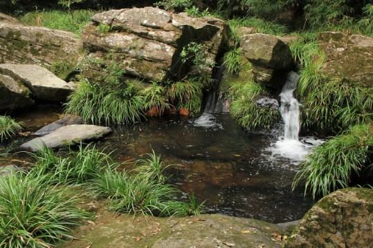 瀑布頂的溪流