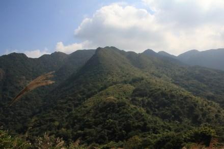 從女婆山方向望看石芽山