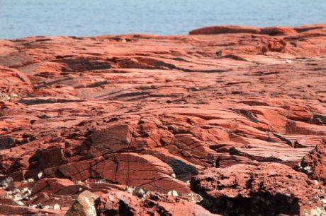 近看岩石的節理