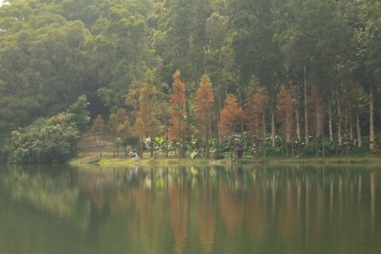 寧靜的湖面