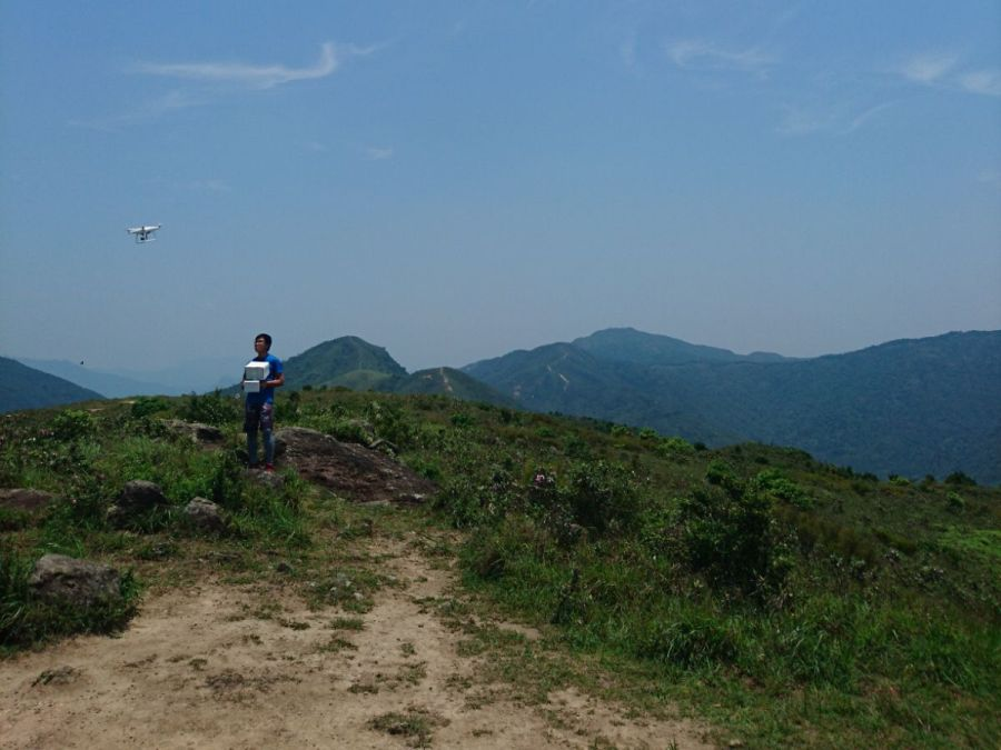 aerial6