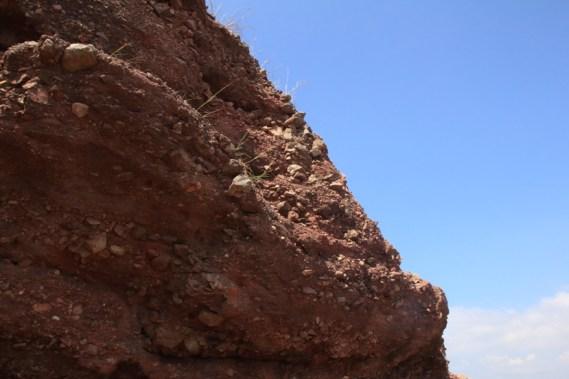呈灰紅色的岩層
