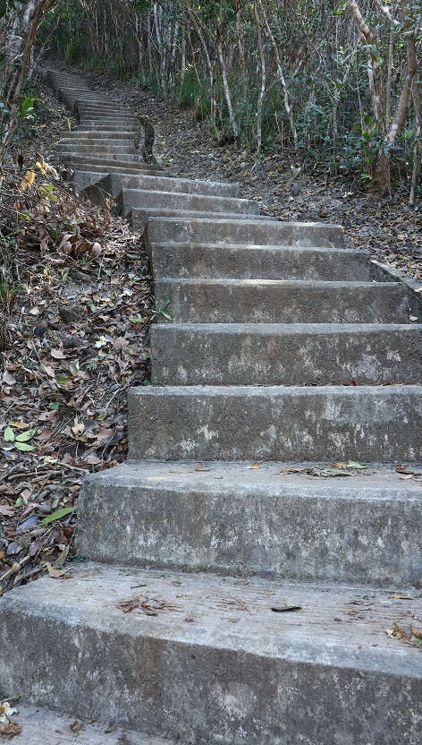 漫長的登山梯級