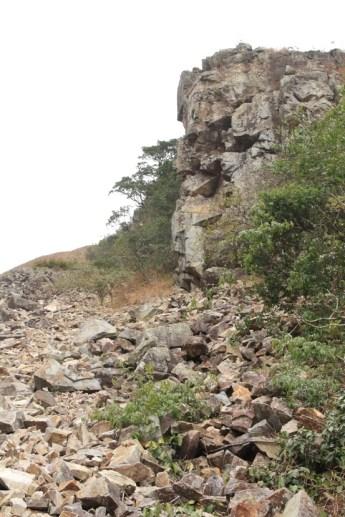 右邊的崖壁確實像一頭猛虎