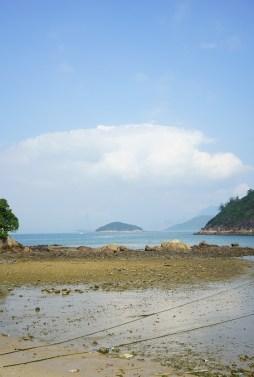 東灣的泥灘