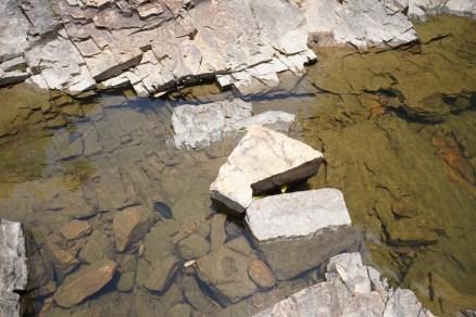 溪澗的岩層結構