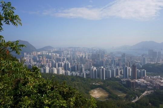 回望九龍市區的景色