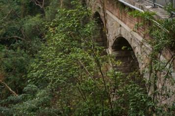 部分孔拱卷段已隱藏在叢林之中