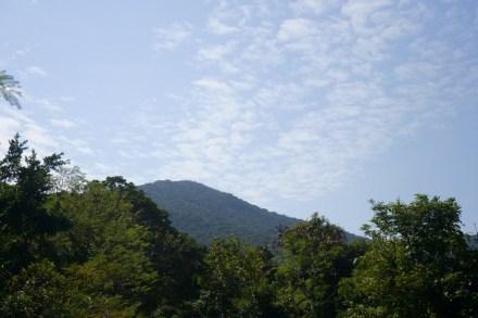 從龍躍徑看砵甸乍山