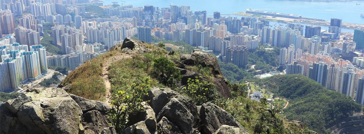 飛鵝山kowloon Peak 行山路線 資訊