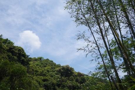 龍泉谷的上空