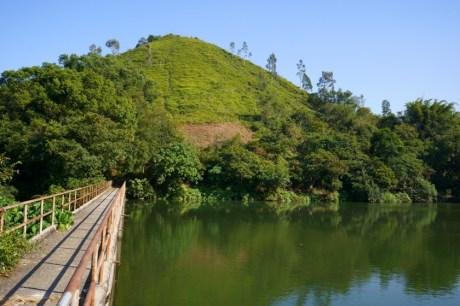 翠綠的山坡