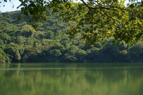 碧綠的湖面