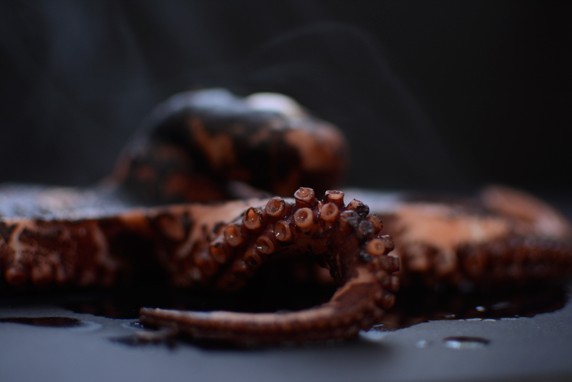 Octopus-Cooling