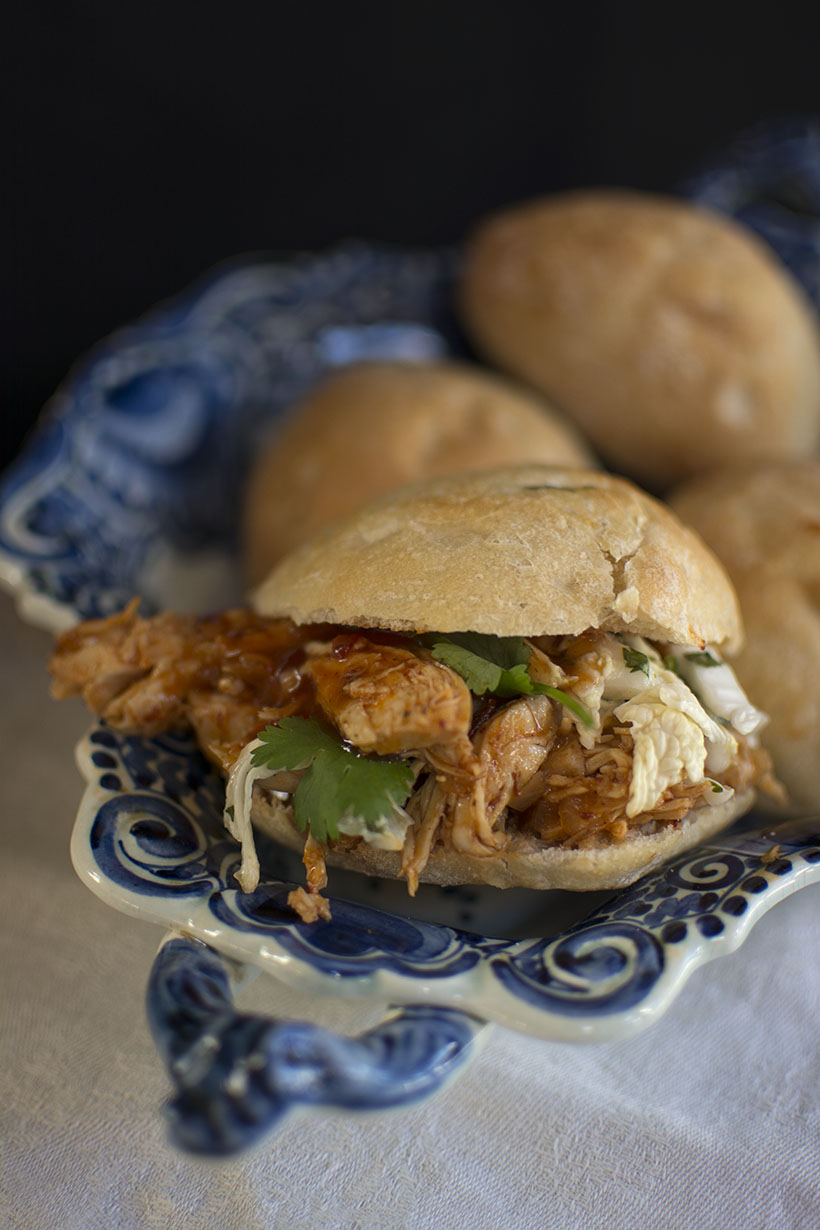 Pulled Chicken Close-Up