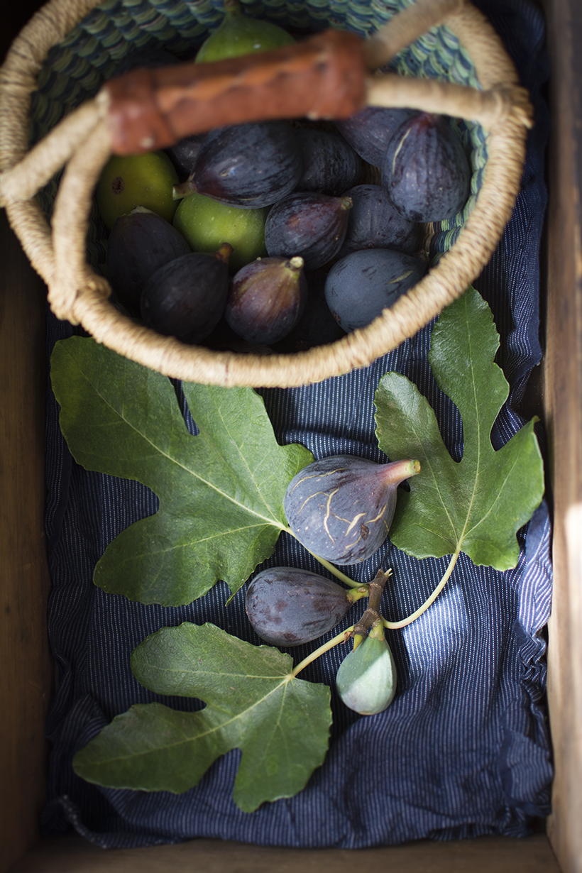 Figs in a Box