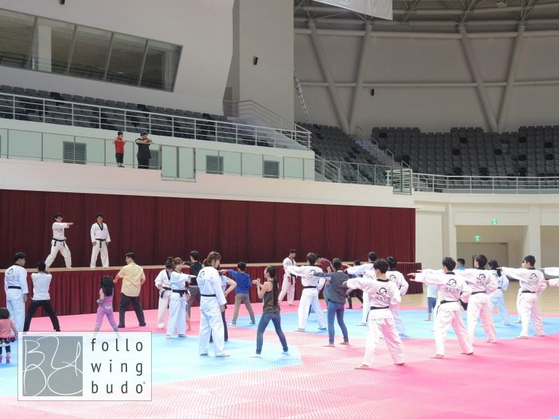 Touristen probieren Taekwondo aus