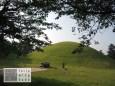 Grab von König Michu