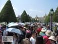Hunderte asiatische Reisegruppen. Dieses Jahr herrschte blanker Horror am Königspalast.