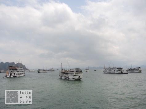 Viele weitere Ausflugsschiffe warten auf ihre Gäste