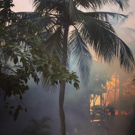 Roter Rauch. Sieht bedrohlich aus, ist es auch. Die wöchentliche Insektizid Wolke.