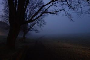Thames Path-043