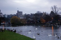View looking back to Windsor Castle