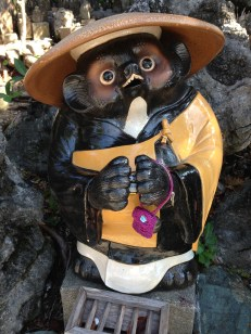 A tanuki with underpants on